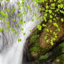 hemiroco-a-frescura-da-primavera